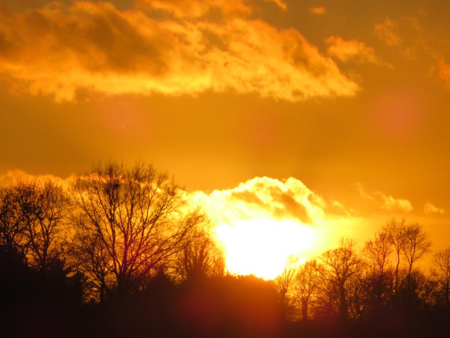 Coucher de soleil en Brocéliande mars 2019 007pm.jpg
