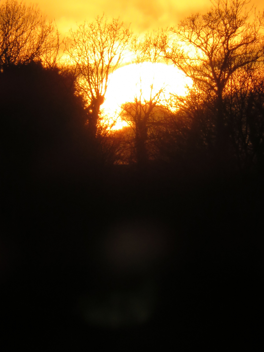 Coucher de soleil en Brocéliande mars 2019 023pm.jpg