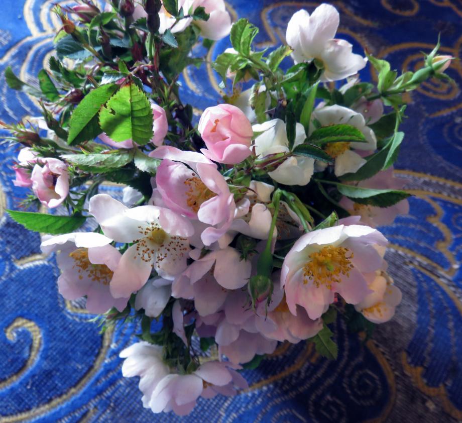 Bouquet pour les chers disparus juin 2019 001pm.jpg