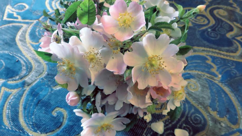 Bouquet pour les chers disparus juin 2019 011pm.jpg
