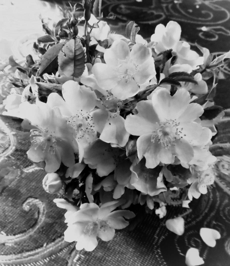 Bouquet pour les chers disparus juin 2019 015pm.jpg
