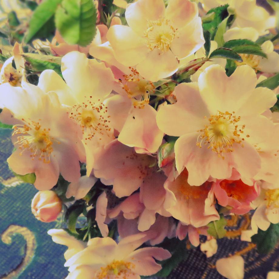 Bouquet pour les chers disparus juin 2019 013pm.jpg