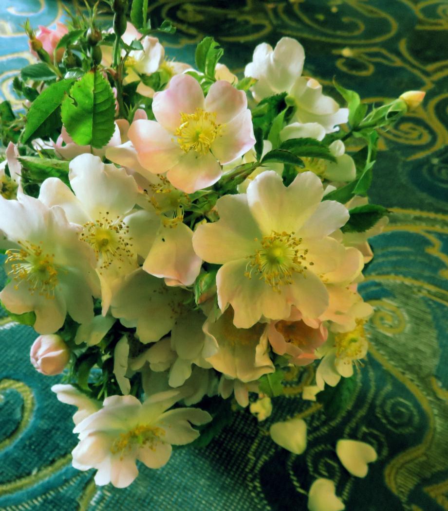 Bouquet pour les chers disparus juin 2019 012pm.jpg