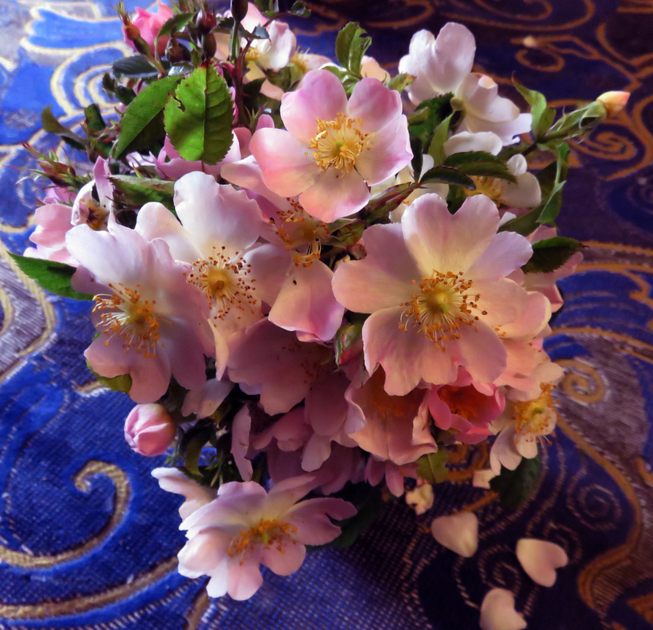 Bouquet pour les chers disparus juin 2019 010pm.jpg