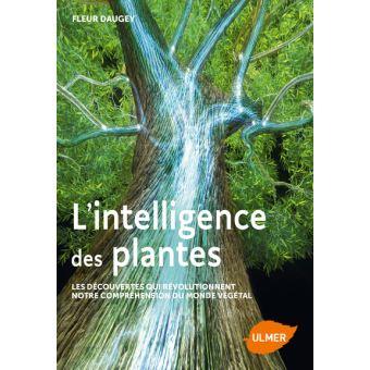 L-intelligence-des-plantes-Les-decouvertes-qui-revolutionnent-notre-comprehension-du-monde.jpg