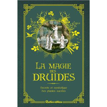 La-magie-des-druides.jpg