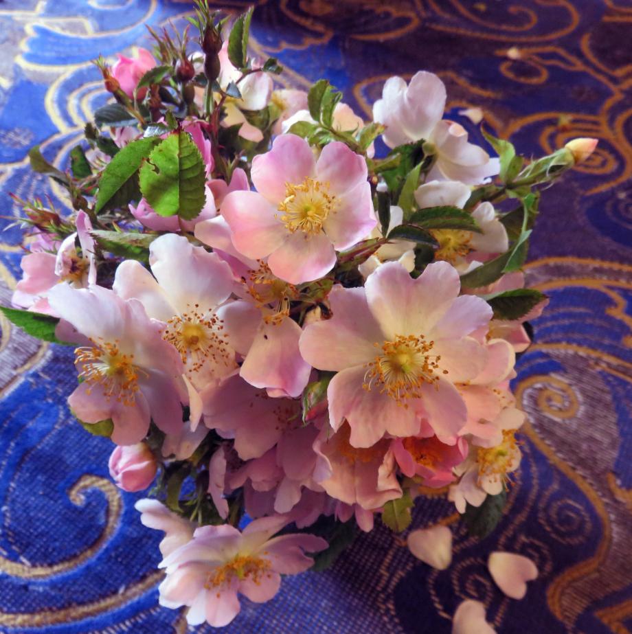 Bouquet pour les chers disparus juin 2019 016pm.jpg