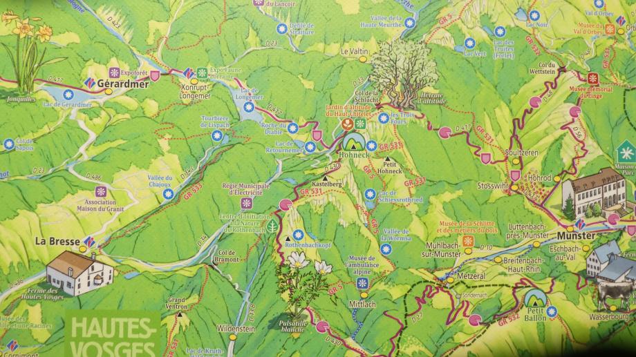 Vosges partie 3 07 2020 143.JPG