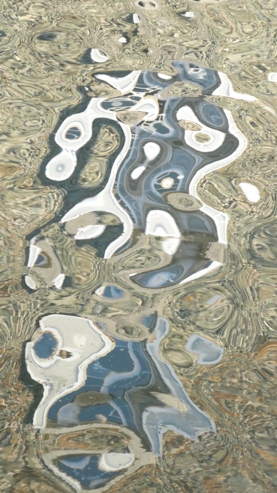 Miroir etang dahouet Sept2020 025.JPG