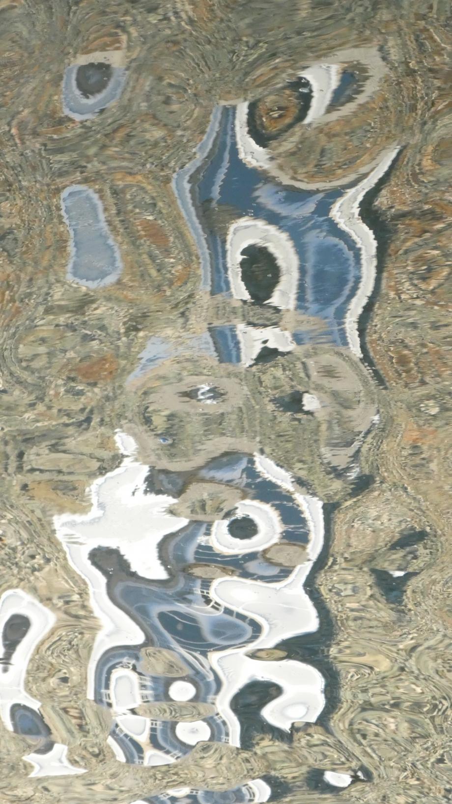 Miroir etang dahouet Sept2020 027.JPG
