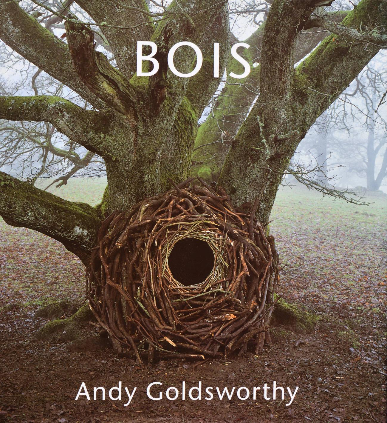 Andy Goldsworthy Bois.jpg