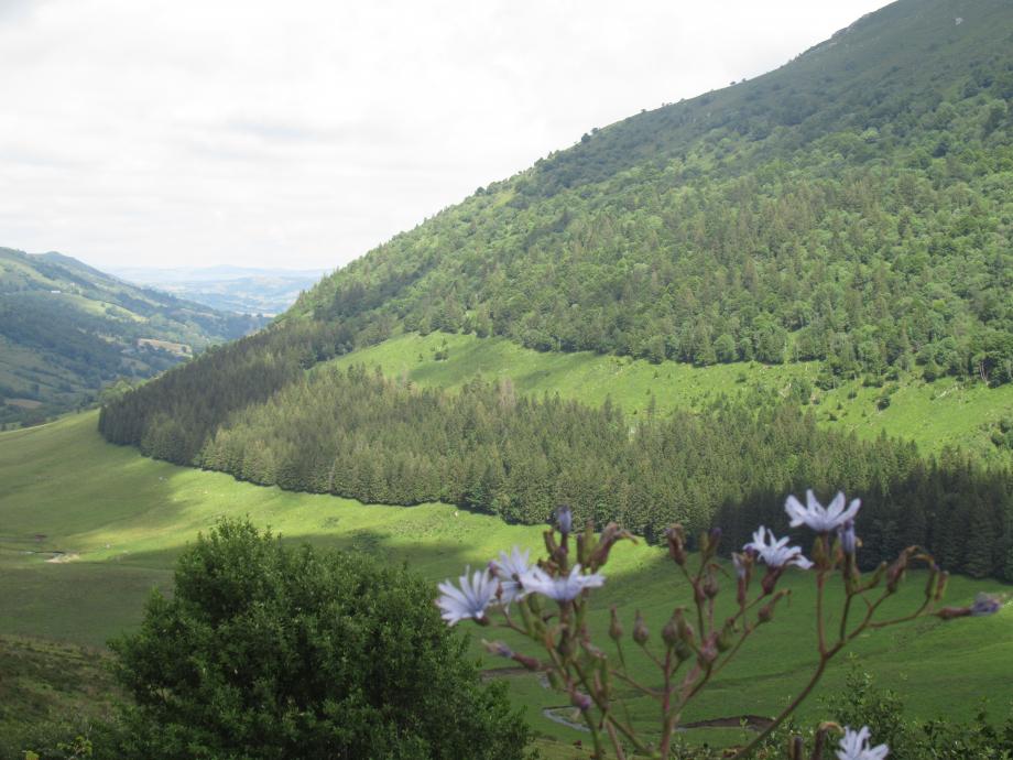 Corrèze 3 17 07 2021 154.JPG