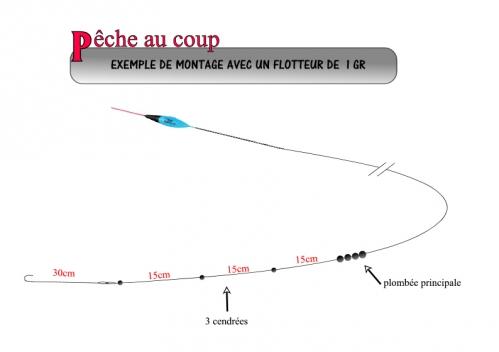 coup_flotteur1gr.jpeg