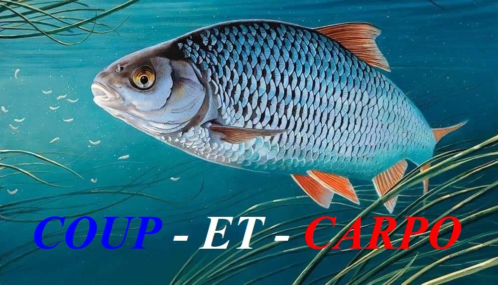 COUP-ET-CARPO