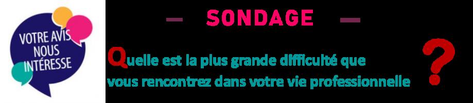 BANDEAU-sondage.png