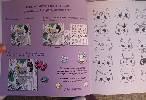 7 animaux.jpg