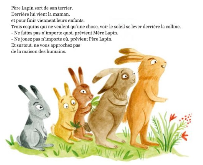 trois petits lapins.jpg