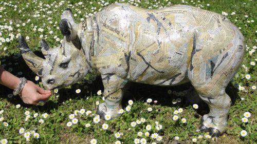 Rhino Indi XXL