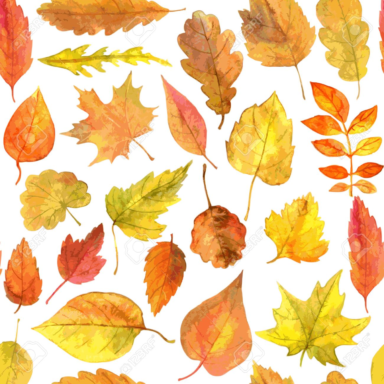 38899414-vecteur-seamless-feuilles-d-automne-dessin-de-aquarelle-éléments-vectoriels-dessinés-à-la-main.jpg