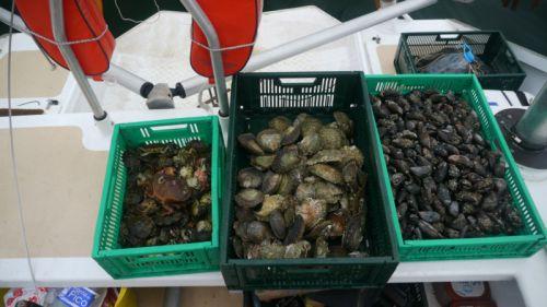 Orgie d'huitre, de moules et de crabes