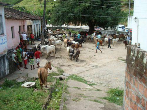 Marché de Maragojipe