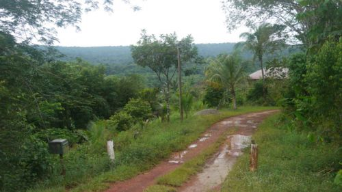 village Hmong : Cacao