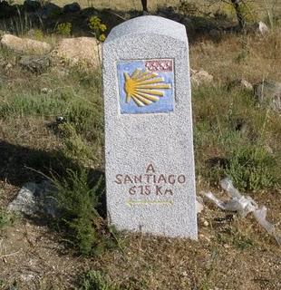Caminodesantiago3.jpg