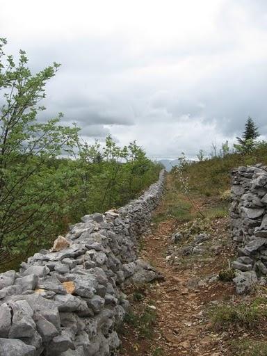 Mur_de_la_peste2.JPG