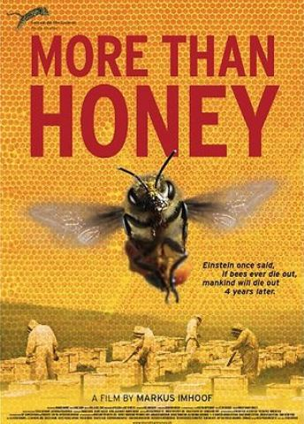 93 - affiche du film More than Honey.JPG