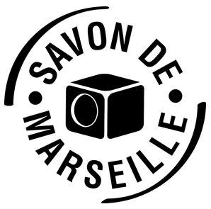 Marius_Fabre_Union des professionnels.JPG