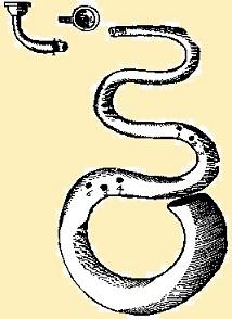 6 - 0 serpent 1.jpg