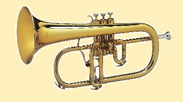 38 - 9 Bugle_2.jpg