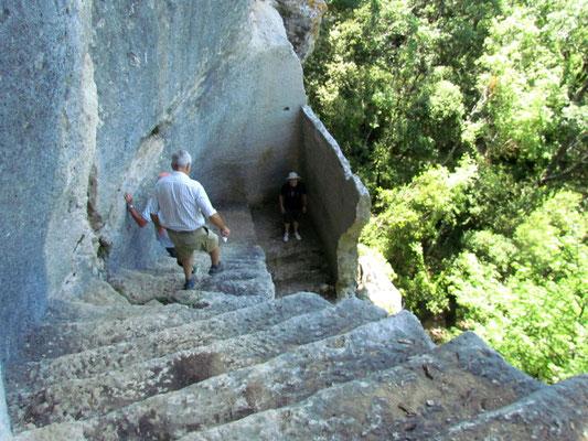 descente de l'escalier dérobé.jpg