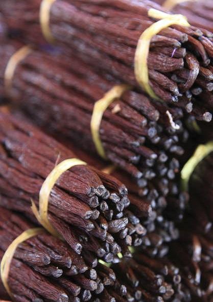 36 - 0 - gousse-vanille-culture-plantation-vanille-reunion.jpg