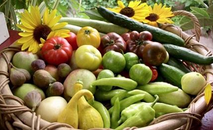 1 - 2 - legumes et fruits en permaculture.JPG