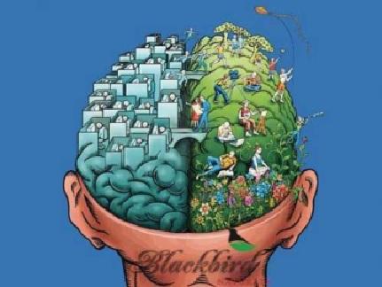 22 - le cerveau gauche calcule le cerveau droit créé.jpg