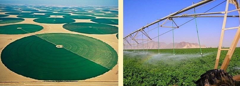 3 - 0 - wadi-rum-farming.jpg