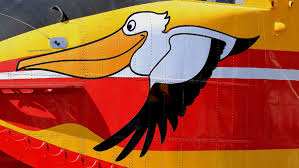 pelican de la SC.png