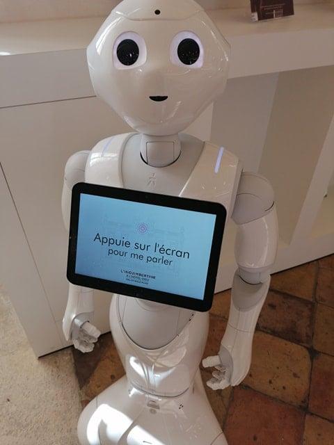 56 - 0 - Robot d'Accueil 7.jpg