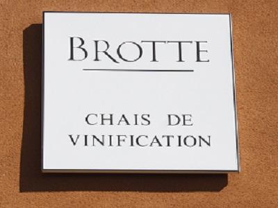in vino CAVE_BROTTE.jpg
