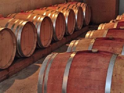 in vino - caveau 2.jpg