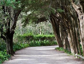 11 - 15 - Parc Maguelone.jpg