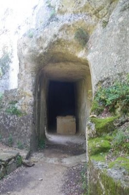 Tunnel des cantarelles 2.jpg