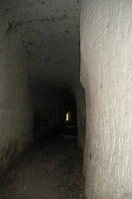 Tunnel des cantarelles 3.jpg