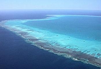 île Bassas da india 3.JPG