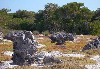 25 - EuropaI roches en champignon 350 x 240.jpg