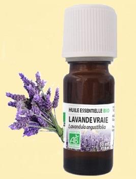 eucalyptus huile essentielle