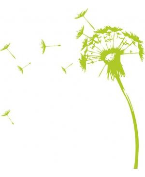 sticker-fleur-de-pissenlit-1_300x364.jpg