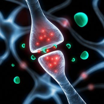 douleur_neurotransmetteurs.jpg