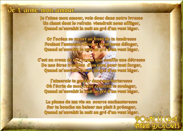 Je Taime Mon Amourforme La Villanesquecréation